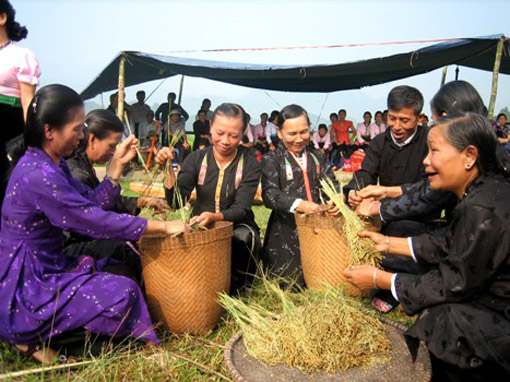 Thai people hold New Rice Festival